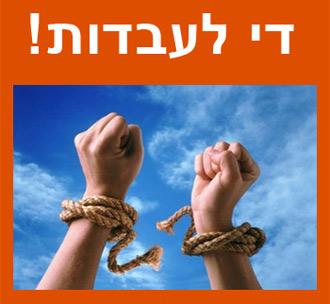 אלי שביט חירות